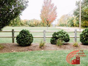 تنسيق تزيين الحدائق