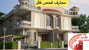 Read more about the article محترف فحص فلل