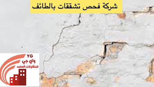 Read more about the article شركة فحص تشققات بالطائف